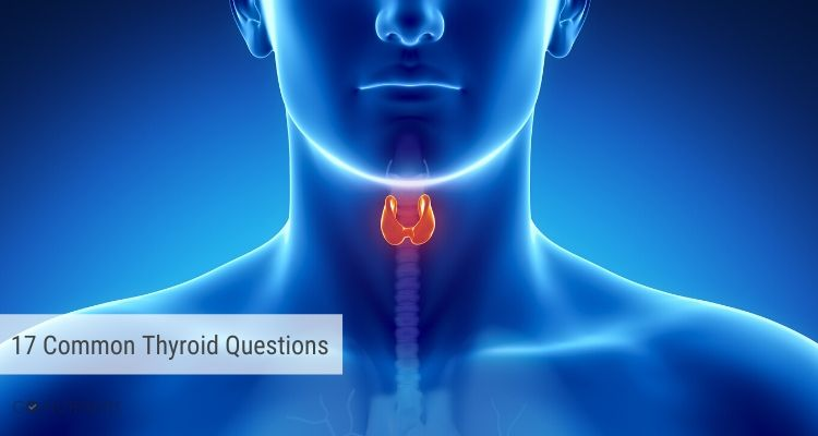 17 Popular Thyroid Questions